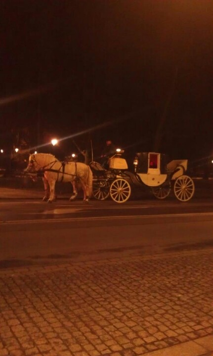 Horse and carriage outside our hotel in Krakow Poland.