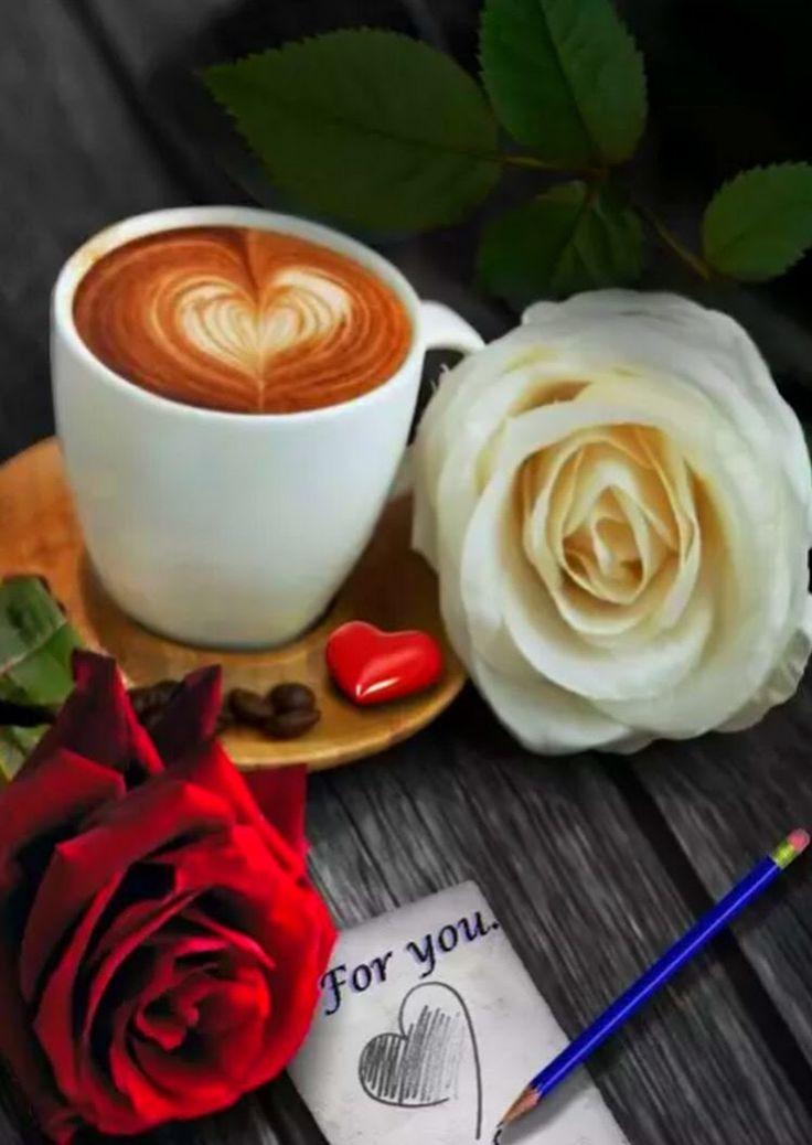 Роза открытки кофе доброе утро, прощенным воскресеньям летием