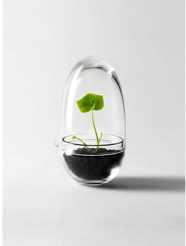 Miniväxthus Grow | Design House Stockholm