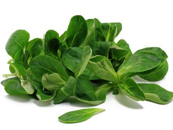 Im Vitamin-Check hängt Feldsalat alle anderen Salate ab. Keine andere Sorte enthält so viel Vitamin C (35 Milligramm / 100 Gramm) wie er. Außerdem macht Jod Feldsalat gesund. Ein weiterer Spitzenwert: Feldsalat ist reich an Vitamin A (650 mg / 100 g), Phosphor, Calcium und Folsäure. Nicht nur weil Feldsalat gesund ist, sollte er häufig auf ihrem Teller landen – Ihre Figur ist Ihnen genauso dankbar: 100 Gramm Feldsalat enthalten nur 14 Kalorien.