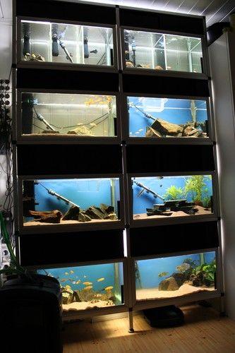 Reol (8*85 liter) | Akvaforum.no - Akvarieforum, akvarium og akvariefisk