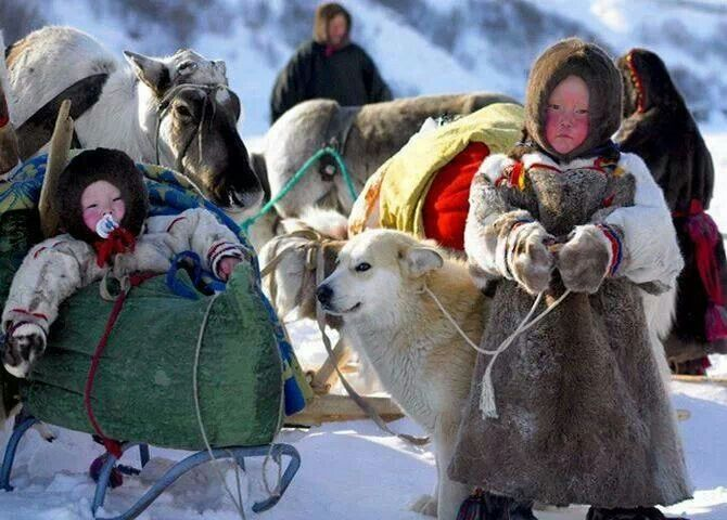 nenets children yamal peninsula - photo #17