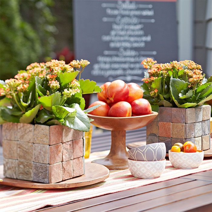 Accent Your Dining Table With Live Plant Centerpieces Set In Easy To Make