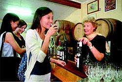 Full Day Gold Coast Hinterland Wine Tour