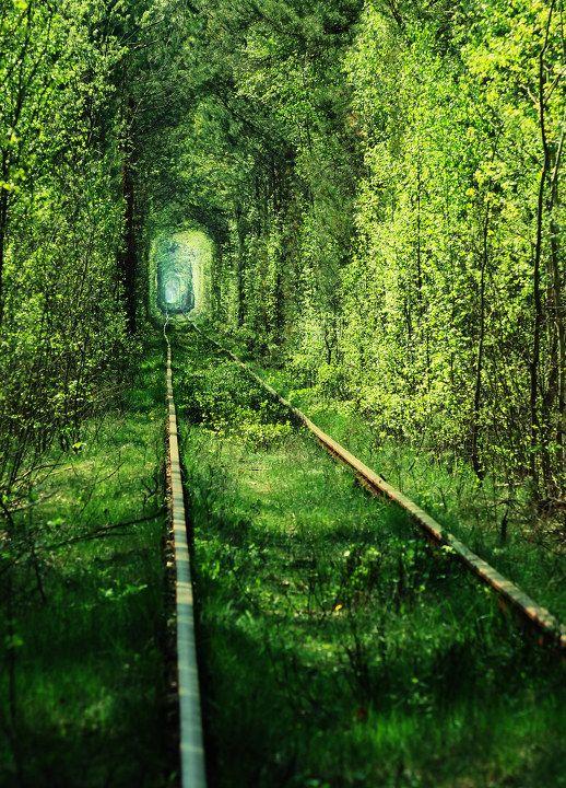 The tunnel of love in Ukraine