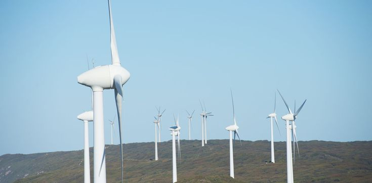 We always hear that renewable energy is getting cheaper, but what does that…