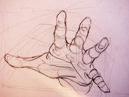 Hand perspective foreshortening perspektivische Verkürzung