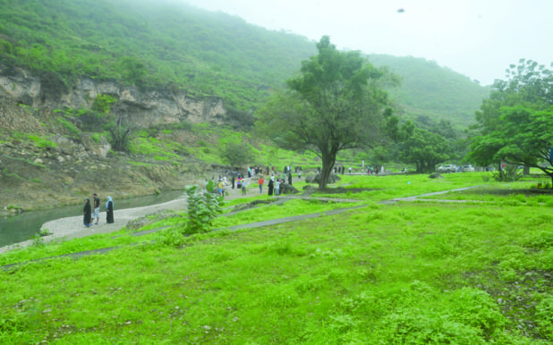 Top Important Facts to Know About Salalah