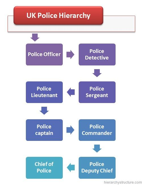 25 best images about police hierarchy on pinterest