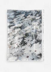 Dancing Daisies: Glass tray - oblong - medium $55.00 USD