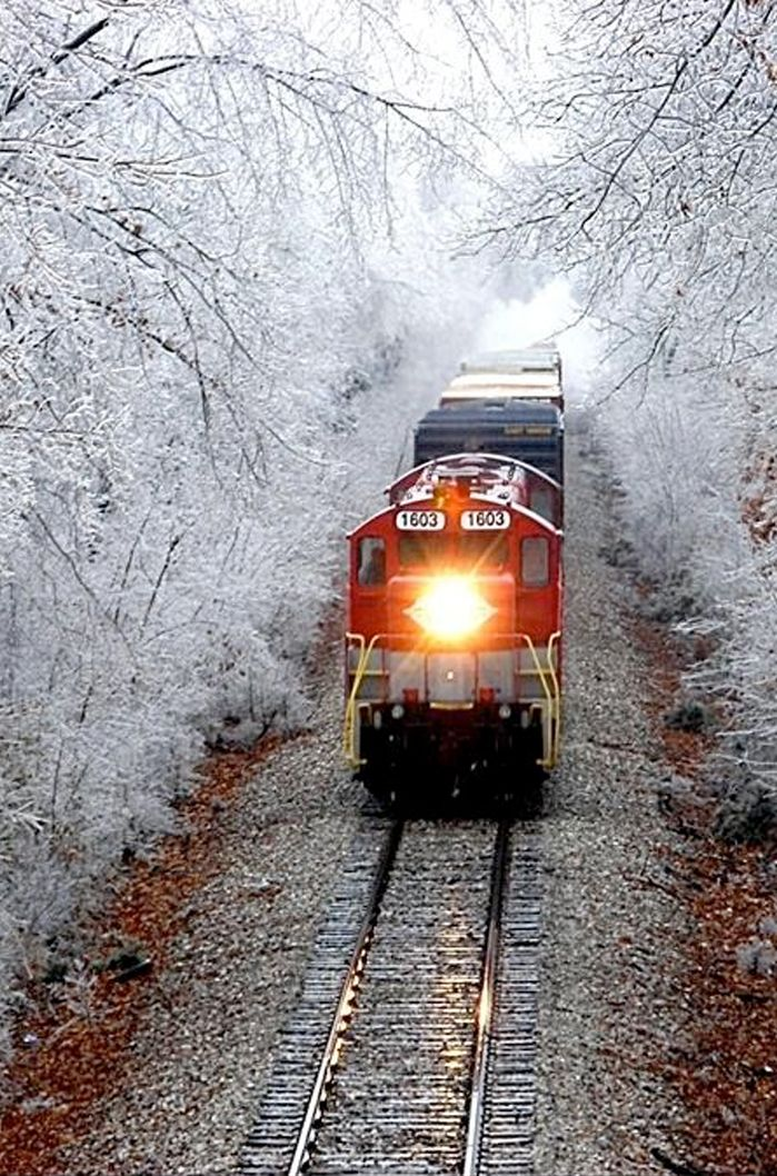 ♂ train snow. I'm loving this one. Train rides are like river boats, one is able to see many different scenes & sites not seen otherwise. Riverboat cruises and tug boat employees can enjoy deer romping or grazing along the river bank, endangered eagles and gorgeous landscape year round. God is the master artist!