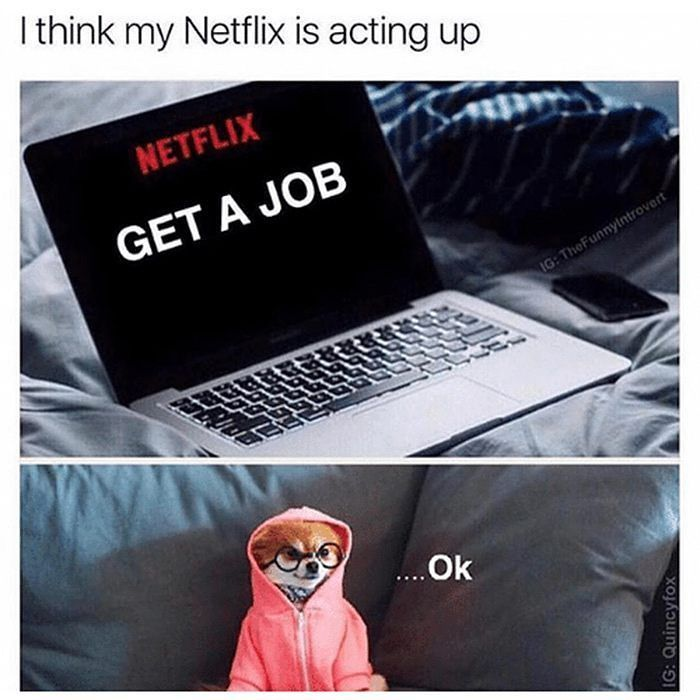 Netflix Sass Time ?    http://onlineclock.net/video/  #NetFlix #Job #Jobs #JobSearch #Careers #Video #Streaming #BingeWatching #Dogs #Dog #Working #JobInterview #Videos #Series #TV #Television #JobHunting #Lazy #CouchPotato #NetflixAndChill #Dogstagram #NetFlixTime