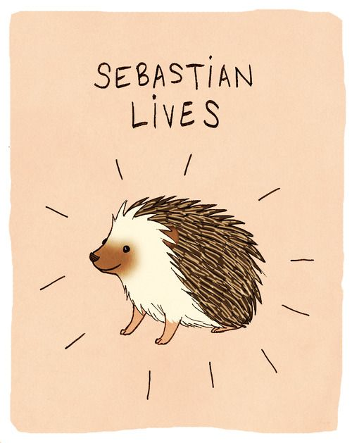 It will be a tremendous comfort to me, when after the Battle of Five Armies, when Thorin, Fili, & Kili are lying dead, to know that somewhere in the forest, Sebastian the hedgehog is still alive and well.