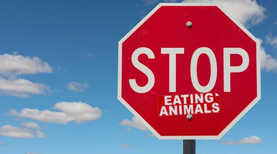 Stop eating animals novelty activism sticker