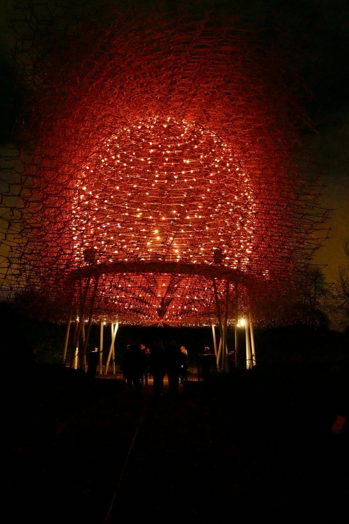 Visitors can experience the Hive, which is beautifully lit up by 1,000 LED lights that pulse in time with the activity of the bees within a real bee hive at Kew, at Christmas at Kew 2016.