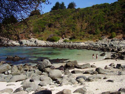playa de Cachagua, 5ta region, chile