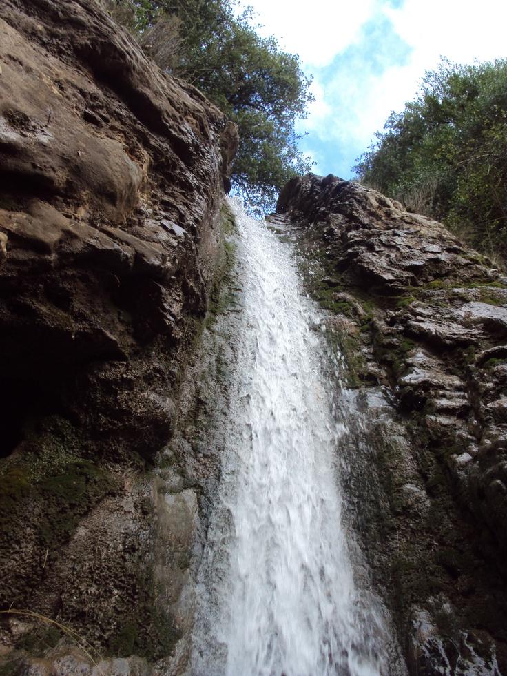 Water,rocks,forest