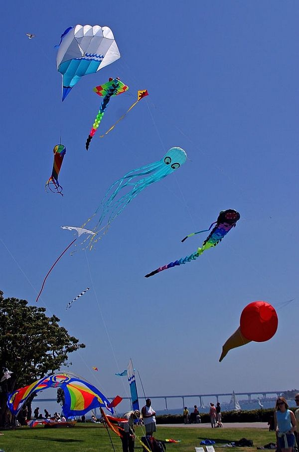 Just a beautifully crisp and colorful photo, featuring a number of kites. From the top - parafoil with spinning drogue, Ray inflatable, Diamond next to it, blue Octopus, a white bird-like art kite off to the left and then a Trilobyte (?) inflatable with flowing tail. The red thing is just a wind-sock, hanging off the line. Oh, and another small bird kite, right up at top left next to the parafoil... T.P. (my-best-kite.com)