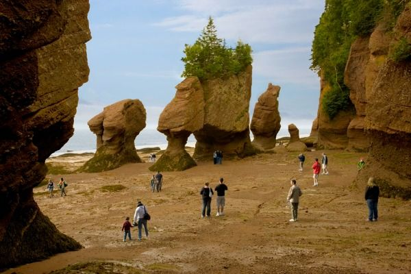 The Hopewell Rocks at low tide/Photo: City of Moncton