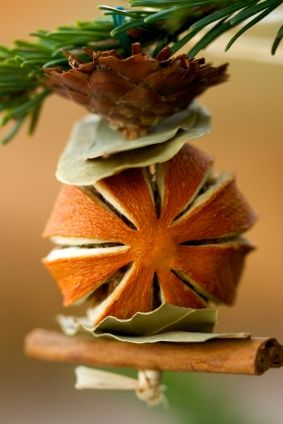Pinecone, bay leaves, dried orange, and cinnamon stick all tied up in a pretty decoration!