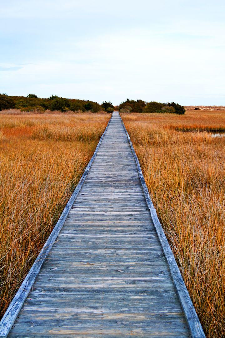 Trail in Kure Beach, NC