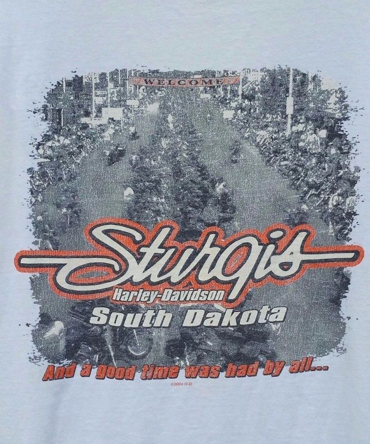 Harley Davidson T-Shirt Sturgis SD Have to Explain Hanes Beefy T Made in USA 2XL