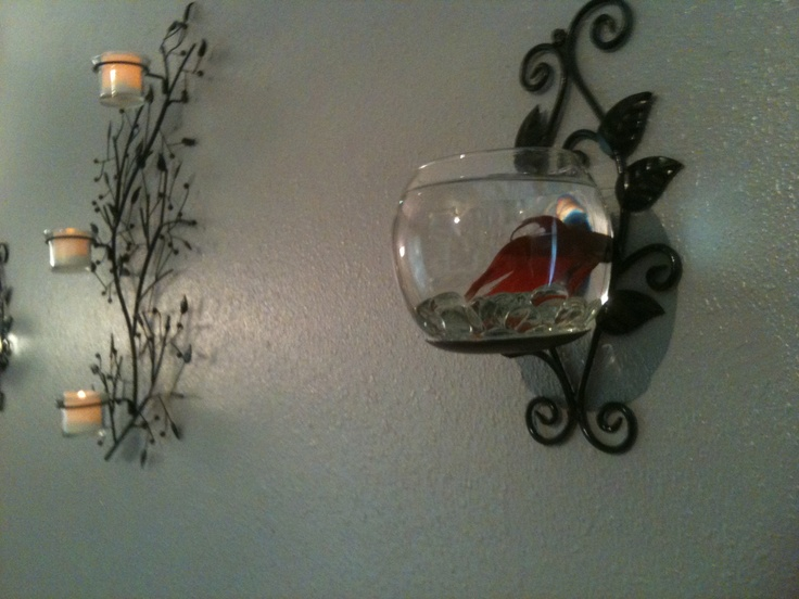 Glued a dollar store bowl to a candle holder and than I put a beta fish in it. I love it