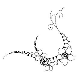 flower, plumeria, frangipani, sun, turtle shell, shark teeth, seashell, waves, seagull, family, union, love, protection, joy, eternity, ancestors, freedomà, harmony