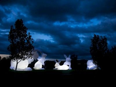 Program | Ghent Lightfestival 2015 | IYL2015 AIL2015. 27. Amanda Parer - Intrude Oude Beestenmarkt  Huge, radiant white rabbits feel perfectly at home. They seem sweet in the white light, but their gigantic size also hints at the ecological devastation their species can inflict.