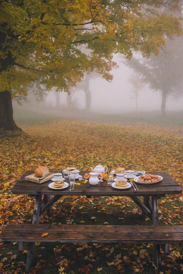Misty Morning In Vermont Autumn Seasonal Autumn