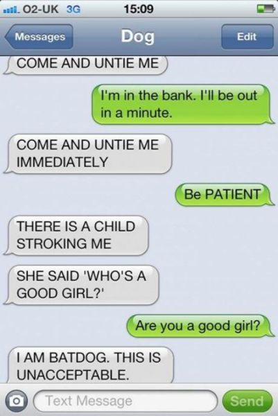 If Dogs Could Text The Conversations Would Be Like This (10 Photos) - NoWayGirlc
