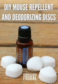 Beautiful DIY Combination Deodorizing Disks AND Mouse Repellent