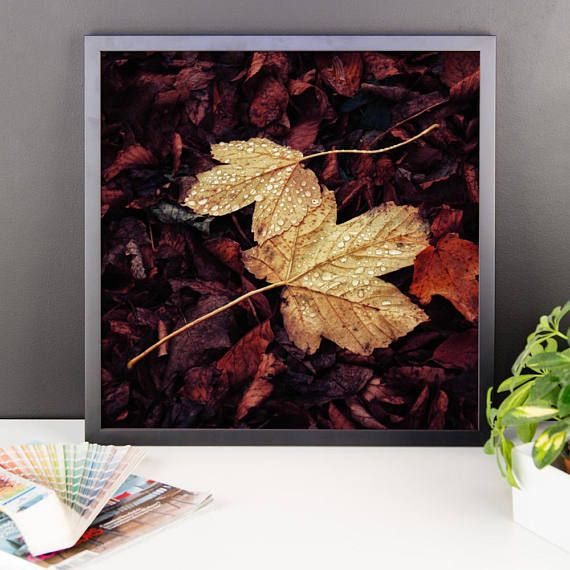 Autumn Remembrance VII. Framed photo paper poster