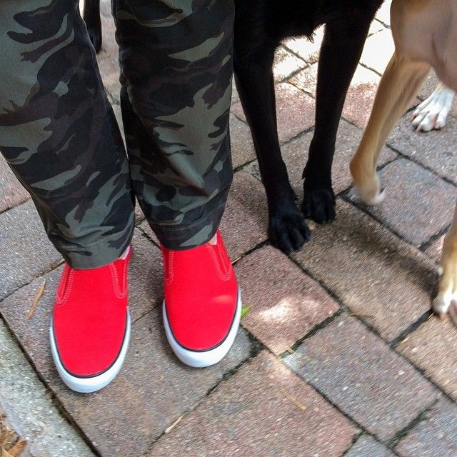 "Via Instagram user @ijam1's photo: ""One of a kind - Pantone 186 shoes from Shoes For Crews. #supercomfortableshoes #shoes #shoefetish #pantones #red #bright #lipstickred #shoesforcrews @shoesforcrews #slipresistant #camo #dog #dogs #blacklabrador #slipresistantfootwear #sneakers #fashion #boatshoes #style #swag #memsfashion #bestslipresistantshoes"""