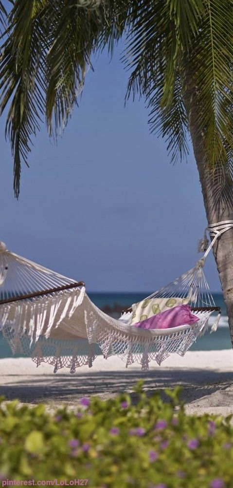 A beach, a hammock and a palm tree - time to plan your next beach vacation!  ASPEN CREEK TRAVEL - karen@aspencreektravel.com