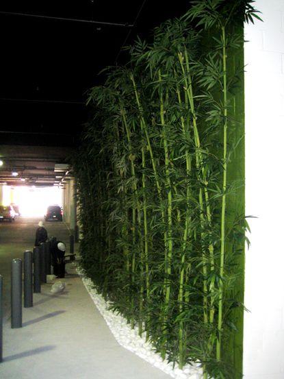 Bamboo Garden Landscaping Plants