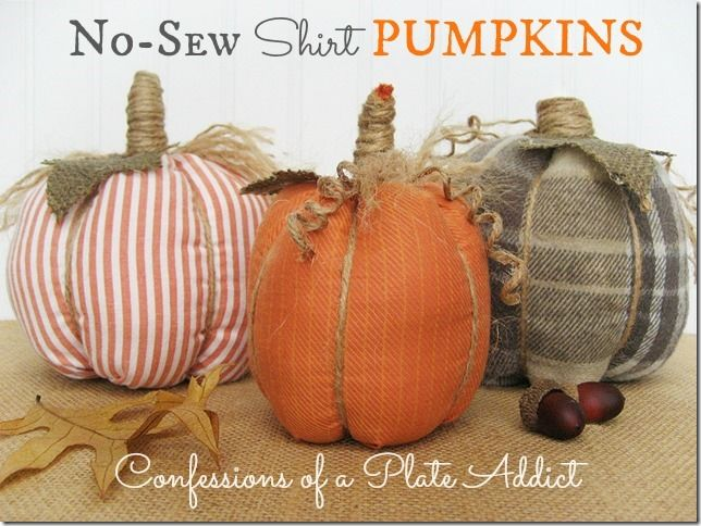 No-Sew Shirt Pumpkins.  These look SO fun... the kids and I will have to go search the closets right away!