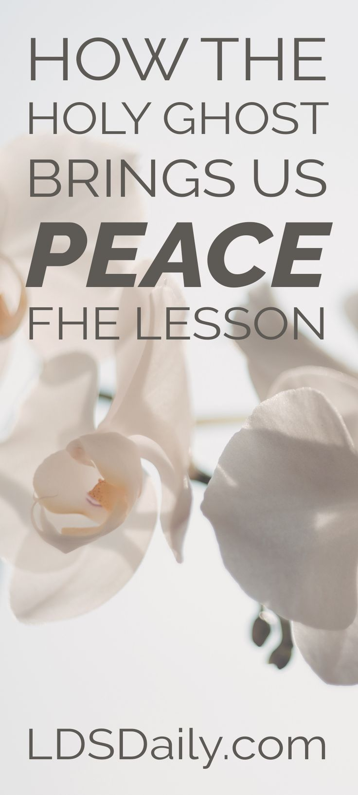 72 best FHE Lessons images on Pinterest