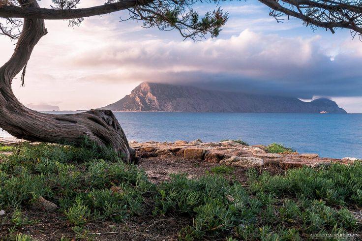 Sardegna-Uno scorcio dell'isola di Tavolara osservata da Cala Ginepro   Foto di Alberto Barroccu