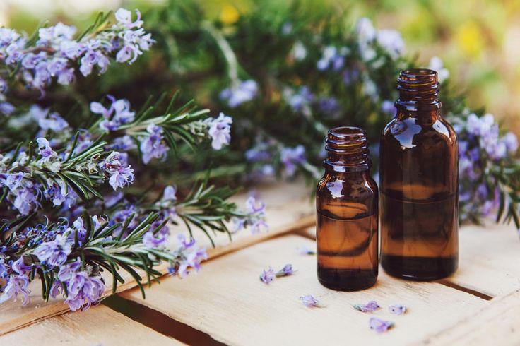 Vous avez du romarin dans votre jardin ? Excellent choix ! Ses feuilles, fleurs et son huile essentielle sont de formidables remèdes naturels. Ballonnements, douleurs articulaires, rhume, foie engorgé… Medisite vous explique comment vous soigner avec.