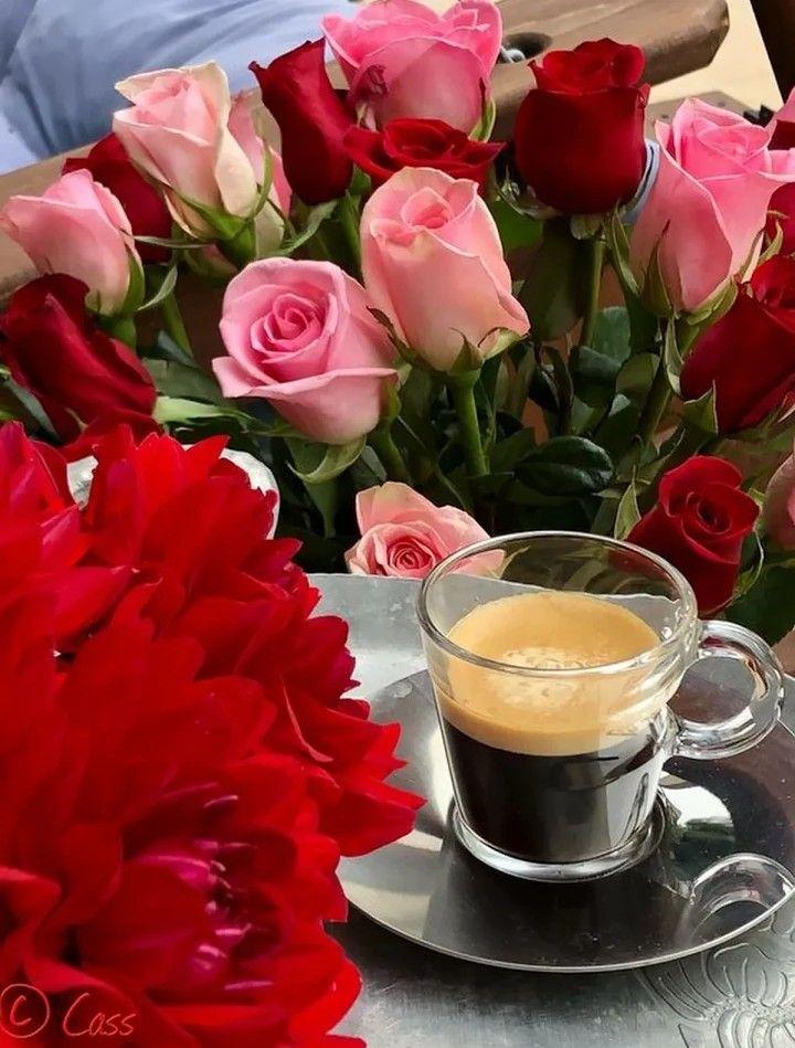 доброе утро картинки красивые с розами для отдыха иволга