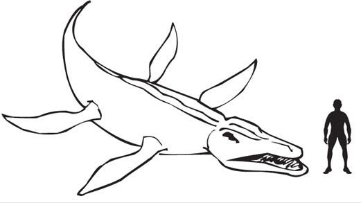What was a Kronosaurus?