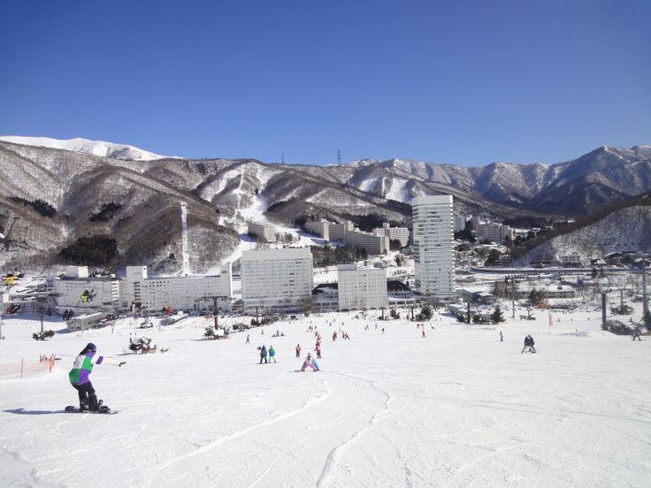 Yuzawa Naeba, Niigata
