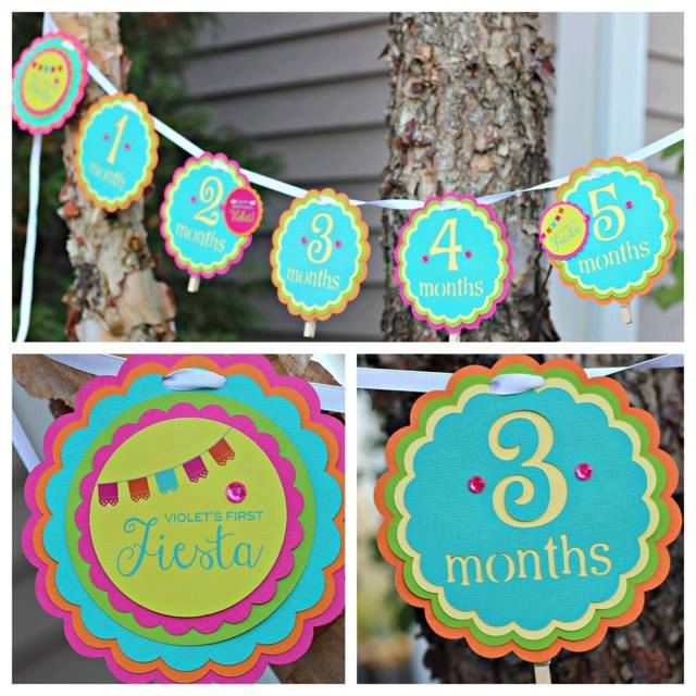 Girl Fiesta 1st / First Birthday 12 Month Photo Memory banner.  Hot pink/orange/yellow/green/teal party decoration. by CharmingTouchParties on Etsy