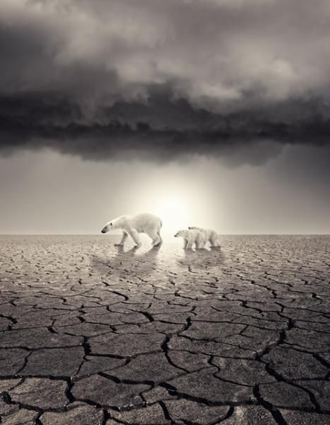 global-warming-poster-designs-7