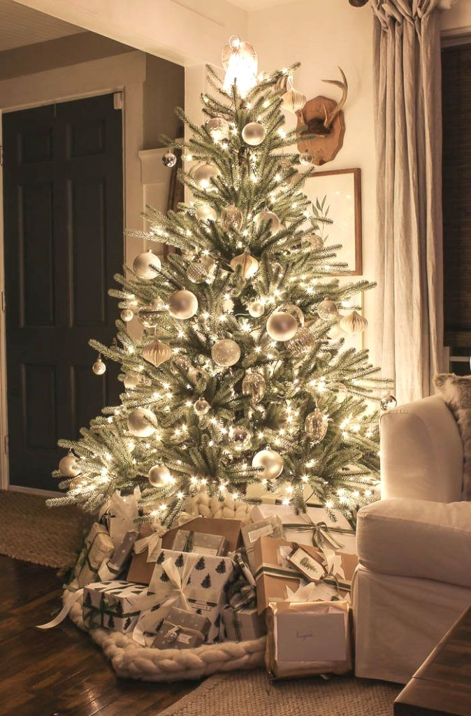 Christmas Lights At Night Rooms For Rent Blog In 2020 Christmas Tree Inspiration Christmas Home Outdoor Christmas Tree Decorations