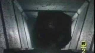 Mr. Roboto- Styx, via YouTube.
