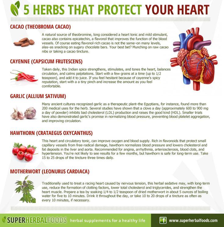 5 Super Kitchen Herbal Plants For Health