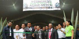 Oaxaca, sede del Primer Congreso Nacional del Agave