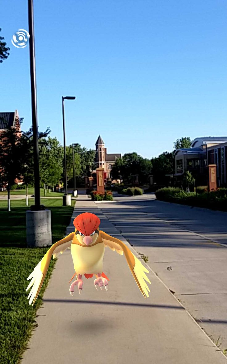 Northwestern College @nwciowa In addition to a whole education for your whole life, Northwestern can provide you with some Pokemon. #PokemonGO